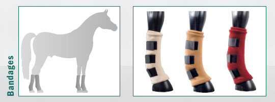 Pferde-Bandagen